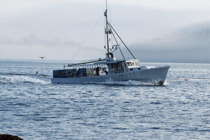 O barco branco da lagosta dirige para fora para ajustar armadilhas com enevoado no porcupi fotografia de stock royalty free