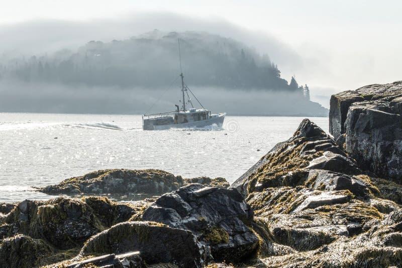 O barco da lagosta dirige fora do porto da barra em uma manhã nevoenta em Maine imagens de stock