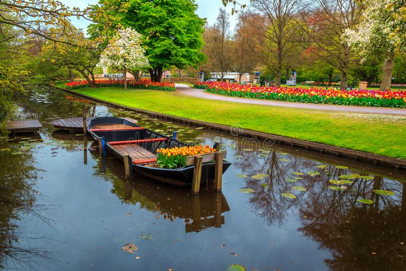 O barco decorativo e as tulipas frescas coloridas em Keukenhof estacionam, Países Baixos fotos de stock royalty free