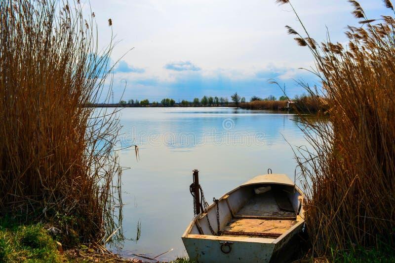 O barco do pescador nos juncos fotografia de stock royalty free