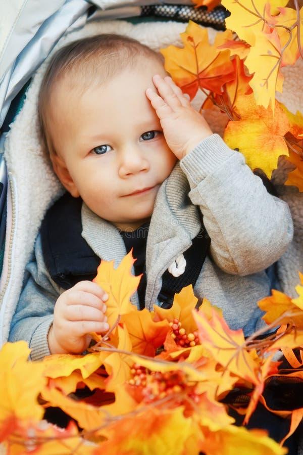 O bebê caucasiano com os olhos azuis que sentam-se no carrinho de criança com queda amarela do outono sae imagens de stock