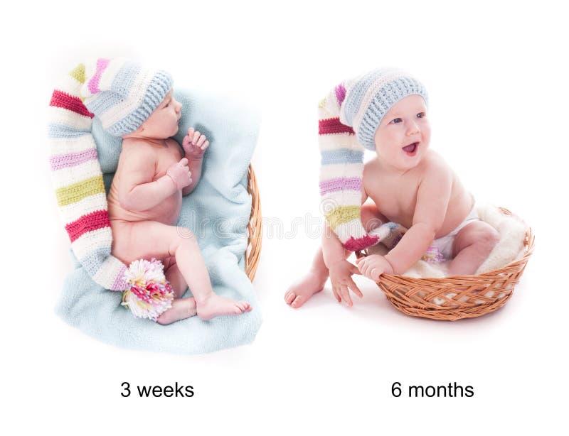 O bebê cresce foto de stock