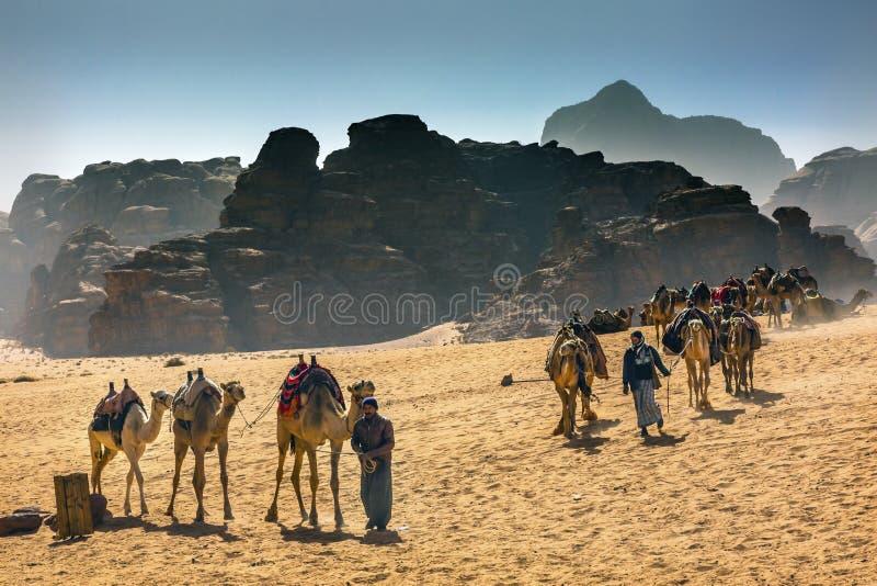 O beduíno árabe guia o vale dos camelos da lua Wadi Rum Jordan foto de stock royalty free
