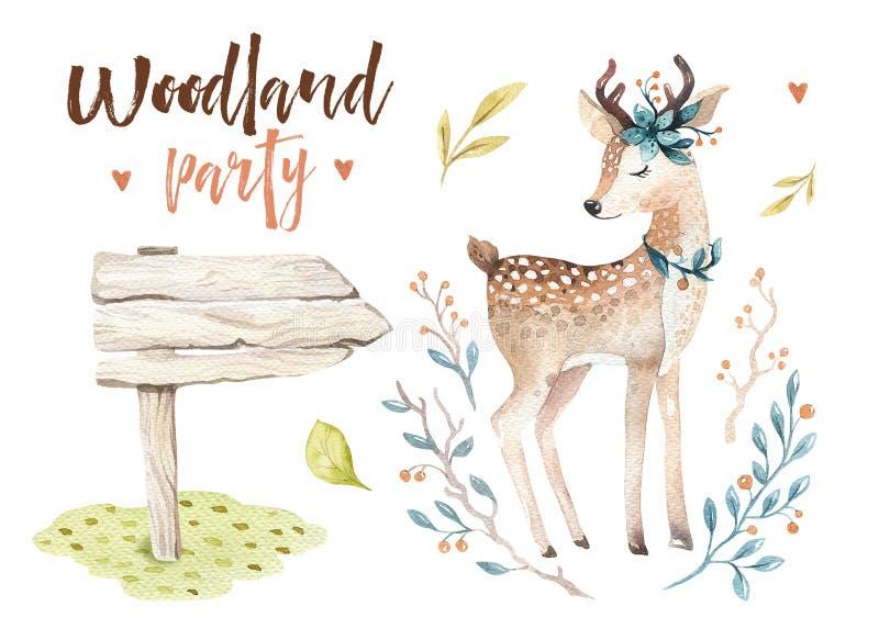 O berçário animal dos cervos bonitos do bebê isolou a ilustração para crianças Desenho da floresta do boho da aquarela, watercolo ilustração do vetor