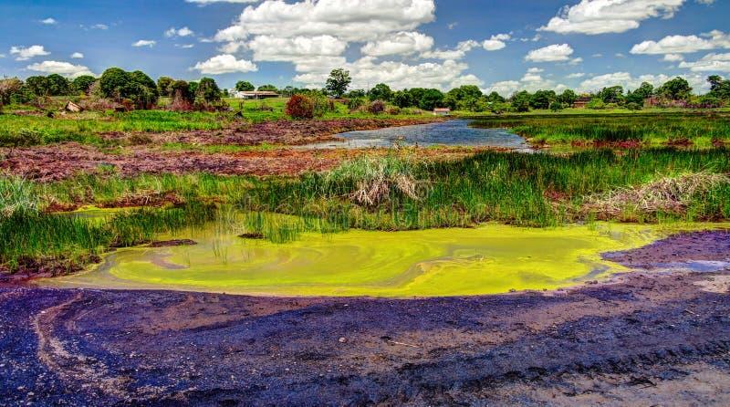 O betume e o asfalto lançam o lago na ilha de Trinidad imagem de stock