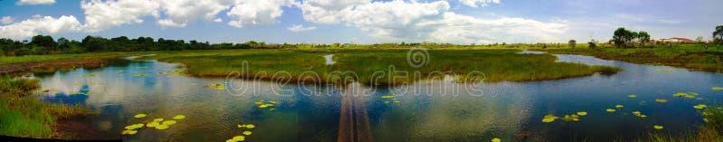 O betume e o asfalto lançam o lago na ilha de Trinidad, Trindade e Tobago foto de stock