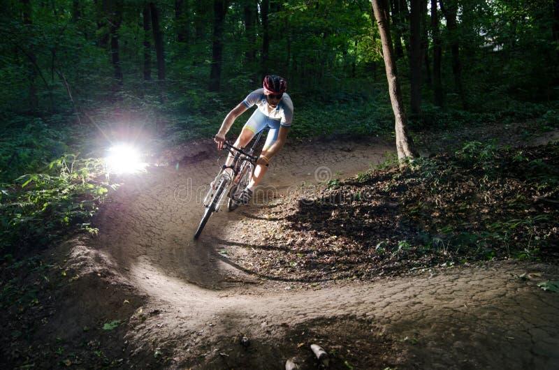 O Bicyclist bikes a floresta fotografia de stock