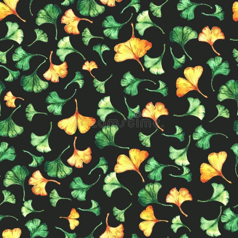 O biloba da nogueira-do-Japão deixa a aquarela floral o teste padrão sem emenda no backround preto Planta da ?rvore conhecida com fotografia de stock