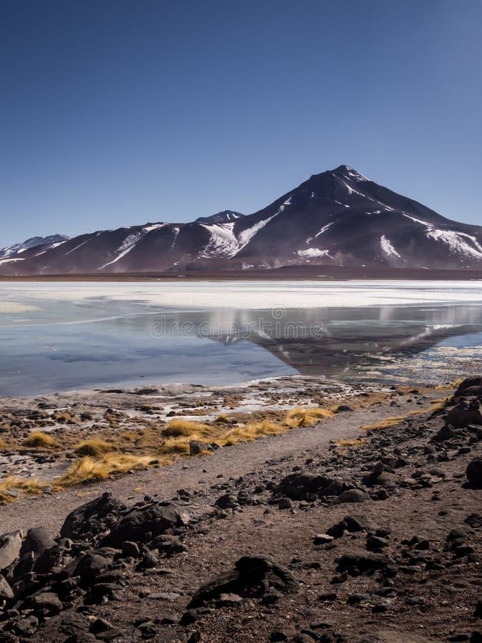 O BLANCA de Laguna é um lago de sal no pé dos vulcões Licancabur e Juriques - a reserva de Eduardo Avaroa Andean Fauna National, imagens de stock royalty free