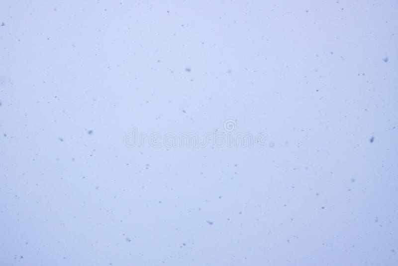 O blizzard da neve cobre o fundo pequeno natural da textura dos flocos de neve imagens de stock