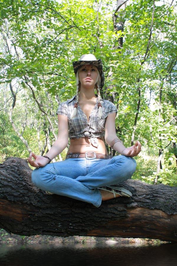 O blonde sexual na madeira senta-se na árvore foto de stock