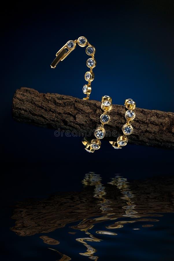O bracelete dado forma serpente entrelaça-se em volta do branchlet foto de stock royalty free