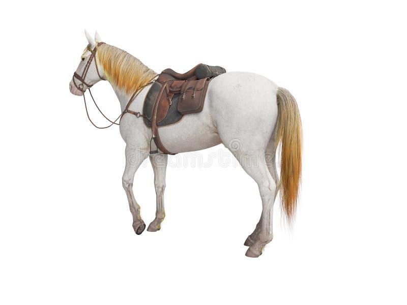 O branco do cavalo com o 3d isolado freio não rende no fundo branco nenhuma sombra ilustração do vetor