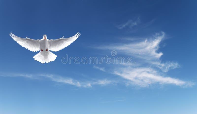 O branco mergulhou em um céu azul, símbolo da fé imagem de stock royalty free