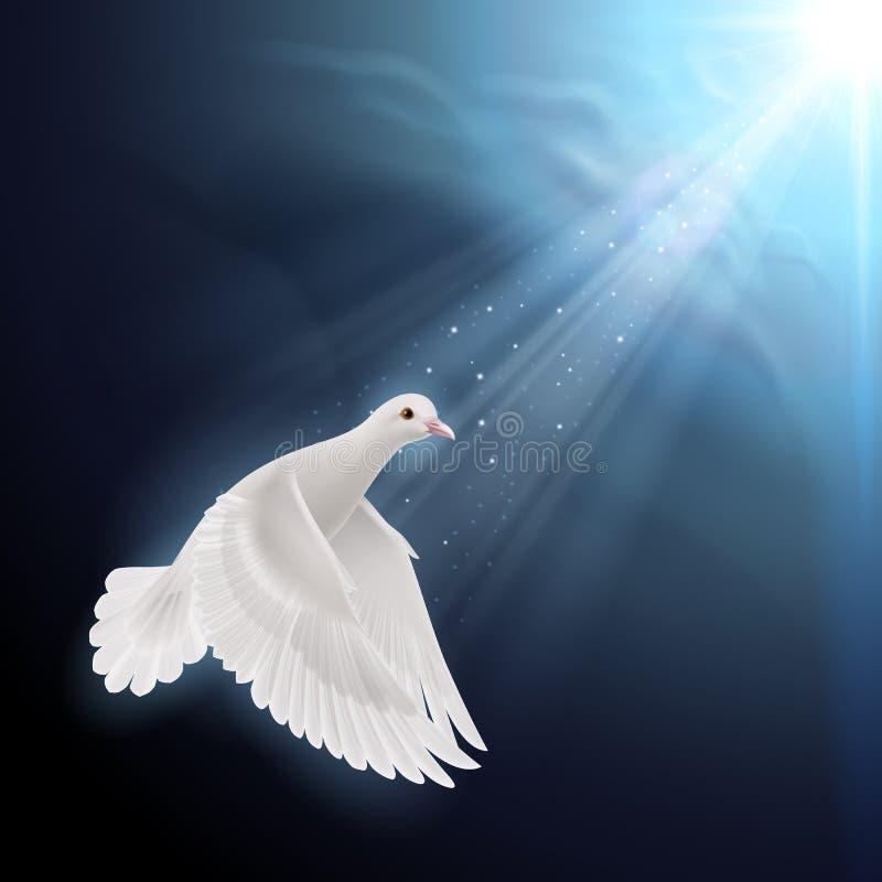 O branco mergulhou na luz solar ilustração stock