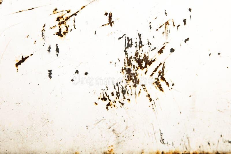O branco oxidado e sujo pintou a parede da placa do ferro do metal com o revestimento de descascamento resistido imagens de stock