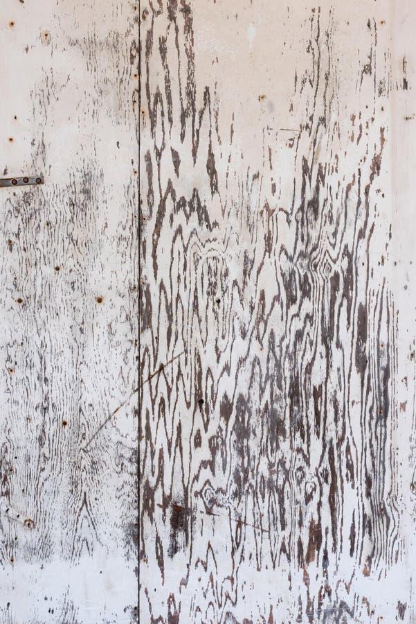 O branco velho lavou a placa da madeira compensada para a textura do fundo imagens de stock royalty free
