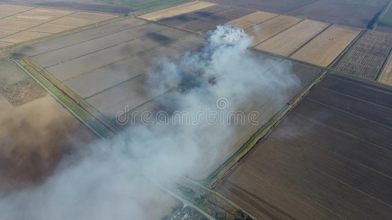 O burning da palha do arroz nos campos Fume do burning da palha do arroz nas verificações Fogo no campo imagem de stock