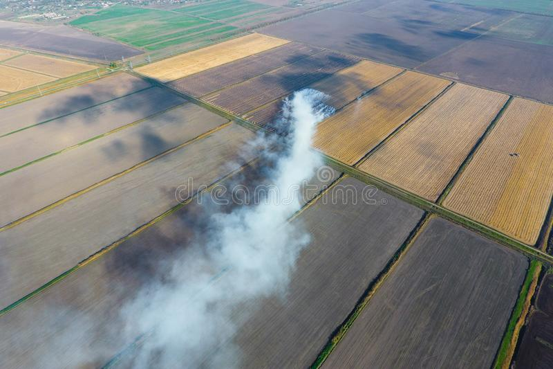 O burning da palha do arroz nos campos Fume do burning da palha do arroz nas verifica??es Fogo sobre fotografia de stock