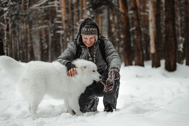O cão branco engraçado está andando no inverno em uma floresta nevado foto de stock royalty free