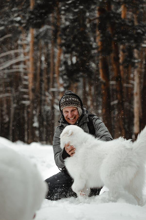 O cão branco engraçado está andando no inverno em uma floresta nevado imagens de stock royalty free