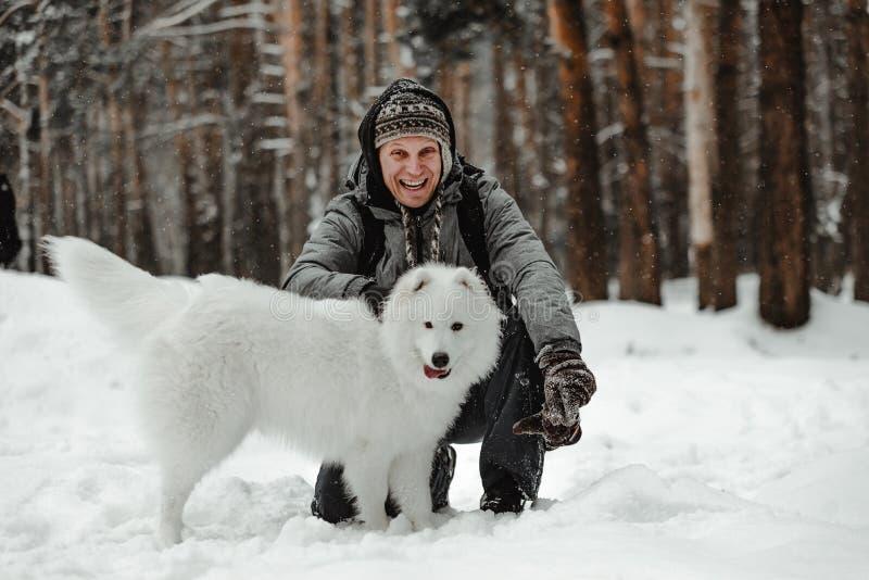 O cão branco engraçado está andando no inverno em uma floresta nevado foto de stock