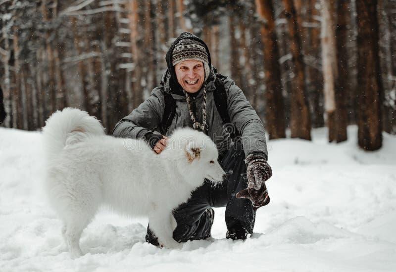 O cão branco engraçado está andando no inverno em uma floresta nevado imagem de stock