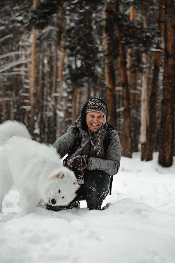 O cão branco engraçado está andando no inverno em uma floresta nevado fotografia de stock