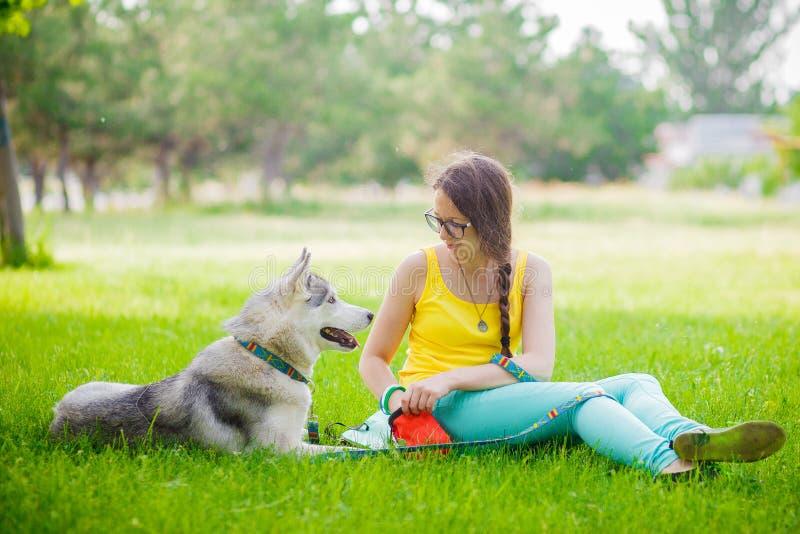 O cão de puxar trenós senta-se com sua senhora em um dia ensolarado na grama foto de stock royalty free