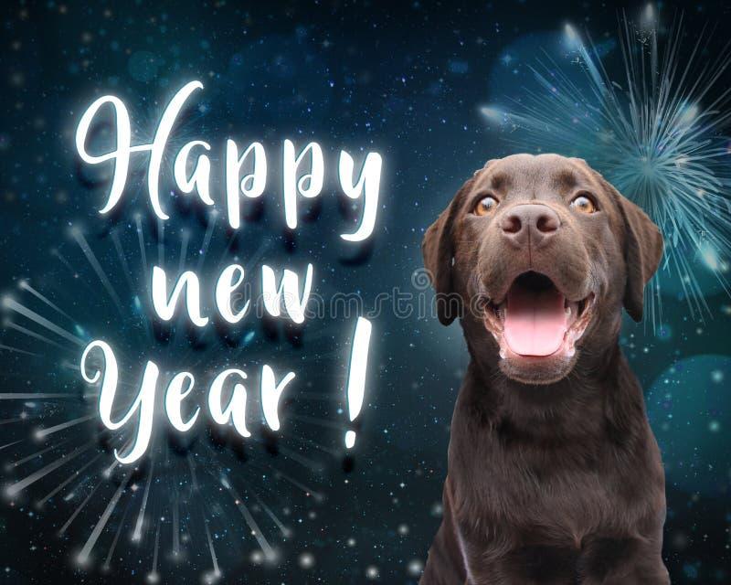 O cão deseja-lhe um ano novo feliz para 2019 com escuro - fundo azul do fogo de artifício foto de stock