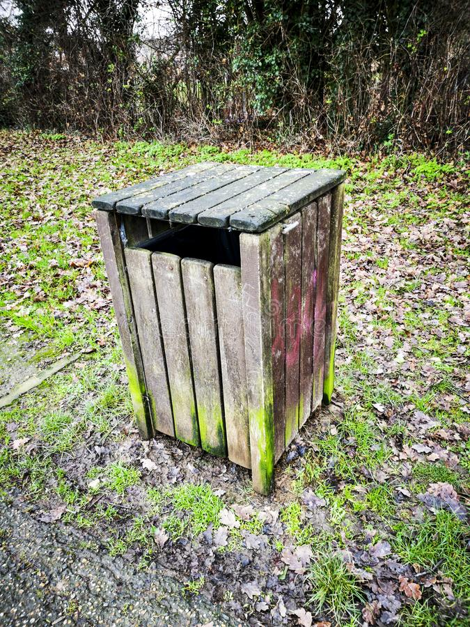 O cão desperdiça o escaninho na floresta foto de stock