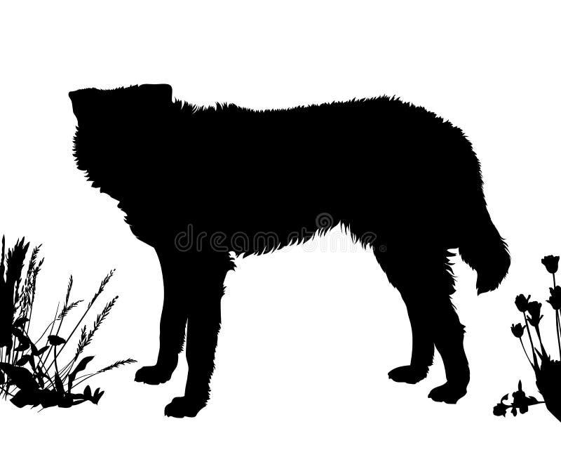 O cão está lateralmente Enegreça a silhueta isolada ilustração stock