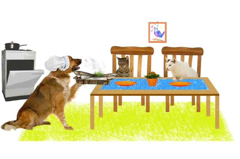 O cão grande é peixe do serviço a dois gatos foto de stock