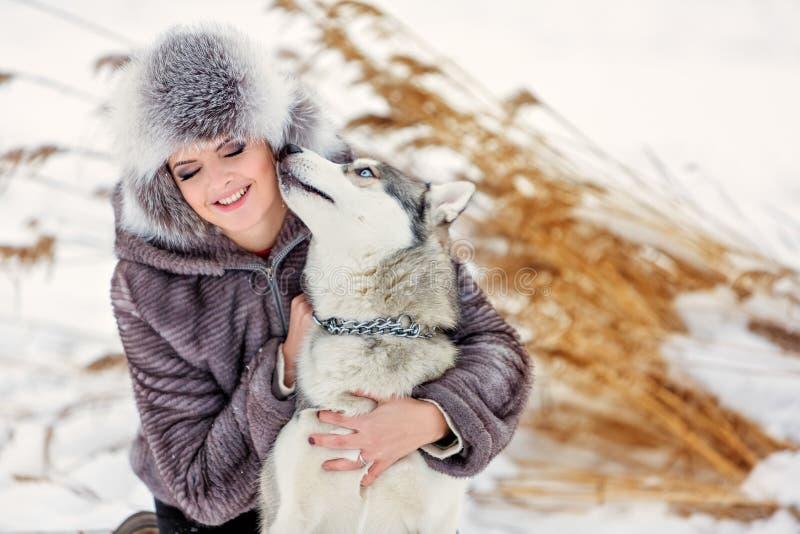 O cão ronco cinzento lambe a menina em juncos do amarelo do fundo do inverno imagens de stock