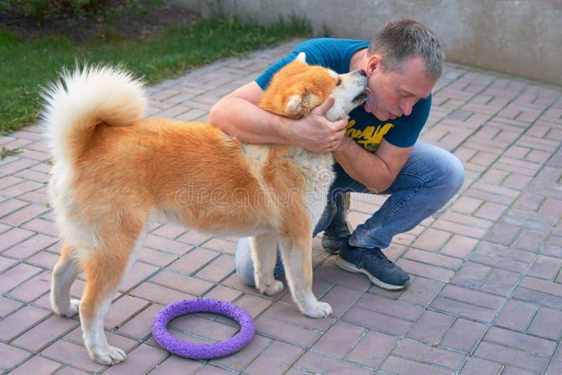 O cão vermelho lambe a cara do proprietário Conceito: amor e devoção fotografia de stock royalty free