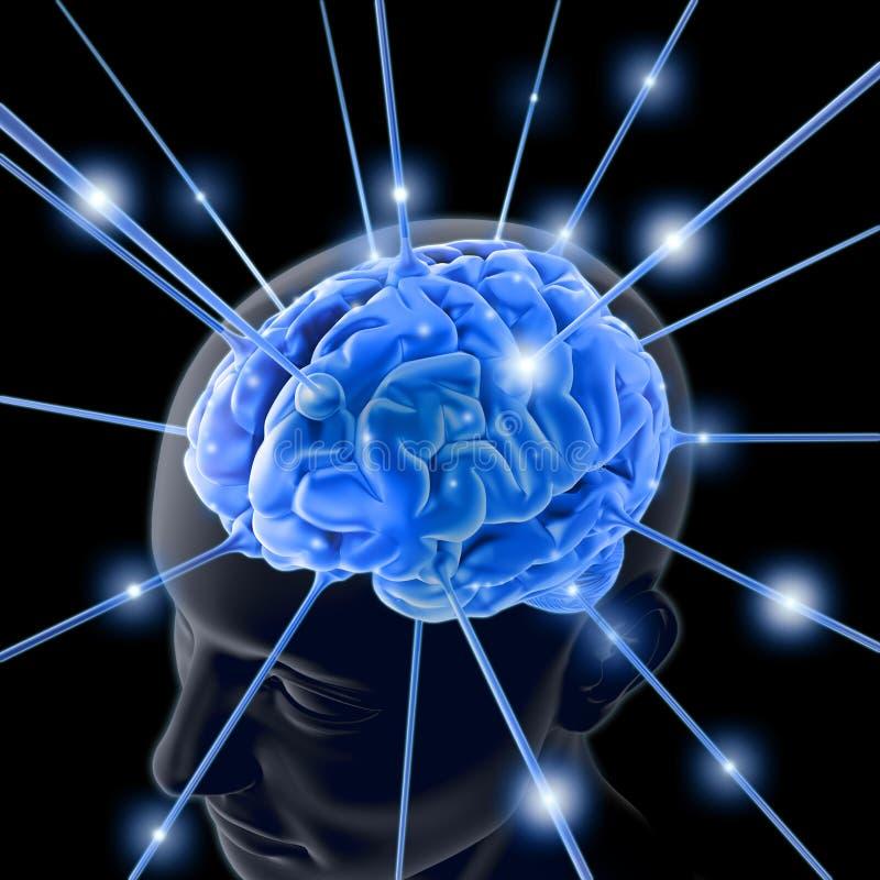 O cérebro ilustração royalty free