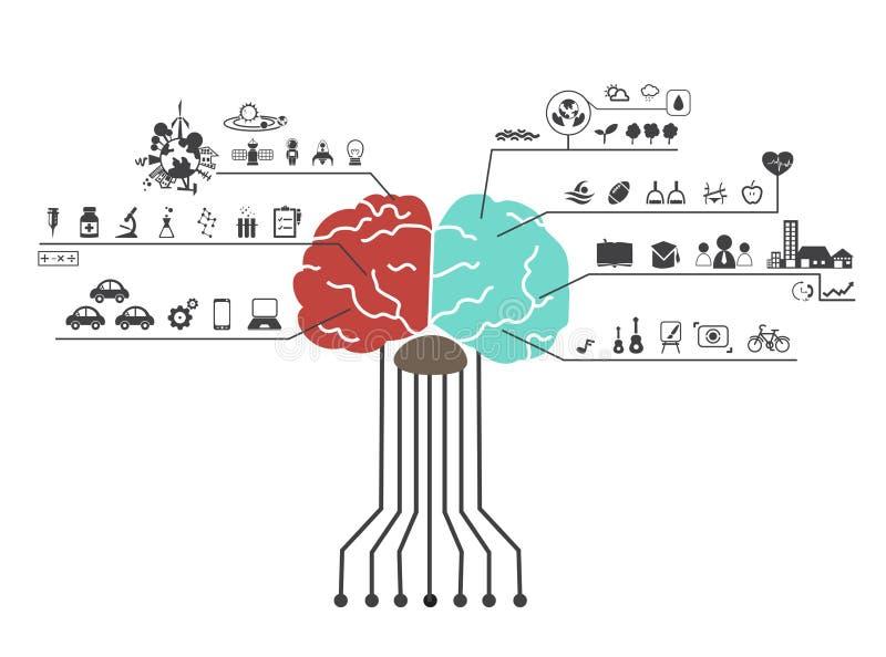 O cérebro esquerdo e direito funciona ícone ilustração do vetor