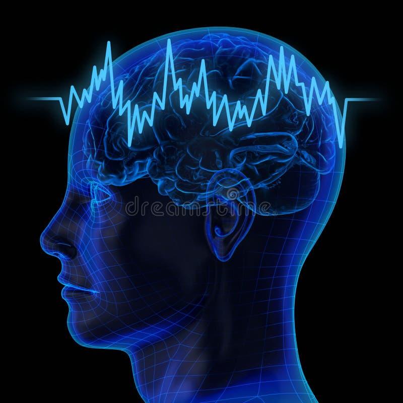 O cérebro humano ilustração do vetor