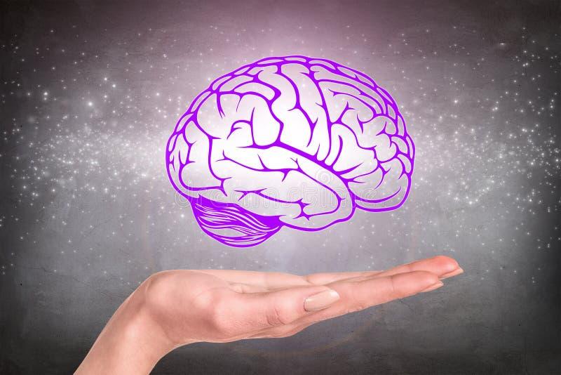O cérebro tirado pairou sobre a mão humana foto de stock