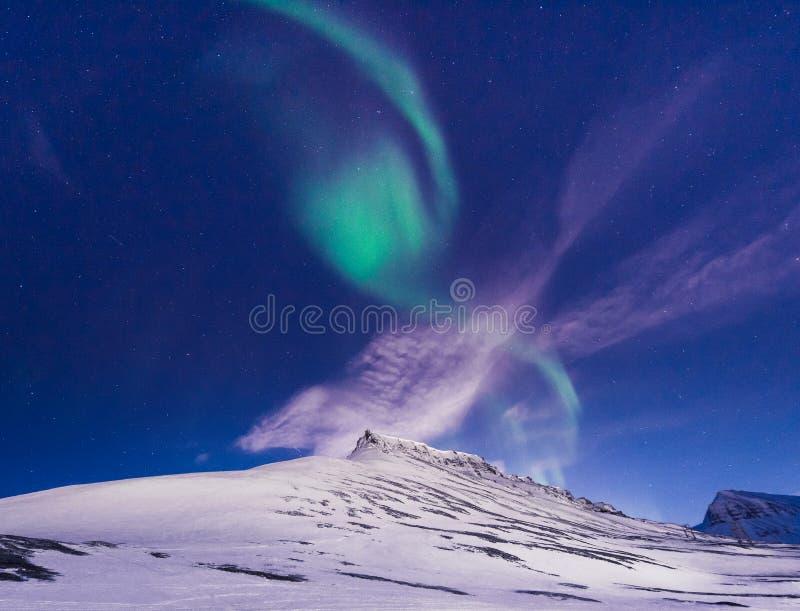 O céu ártico polar do aurora borealis da aurora boreal protagoniza em Noruega Svalbard em montanhas do curso da cidade de Longyea imagem de stock royalty free