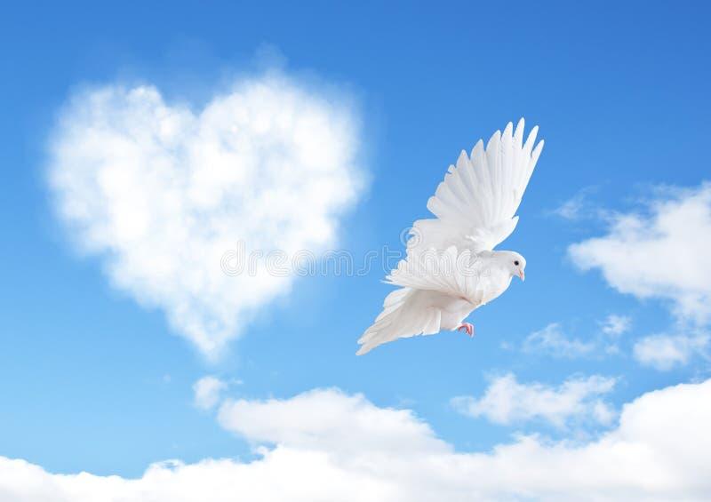 O céu azul com corações dá forma a nuvens e a pomba fotografia de stock royalty free