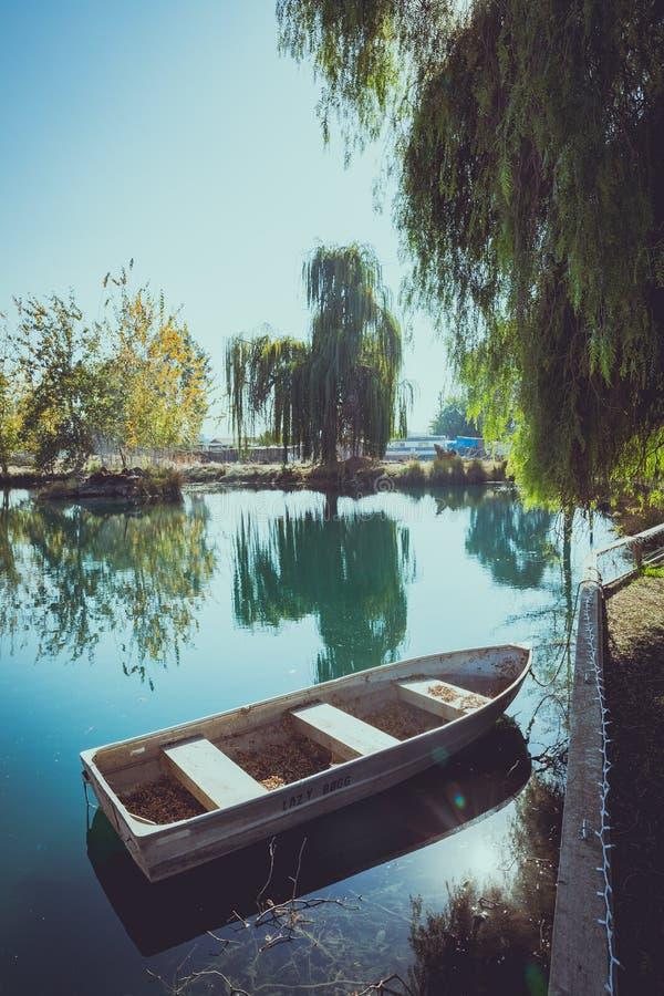 O céu azul da paisagem do verão da mola nubla-se árvores do verde do barco de rio imagem de stock