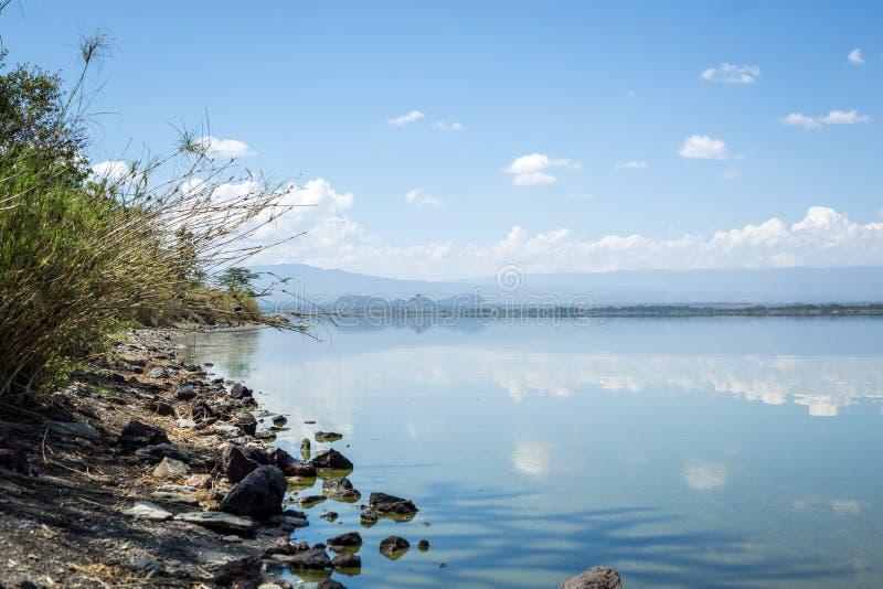 O céu azul refletiu nas águas do lago Elmenteita, Kenya fotografia de stock royalty free