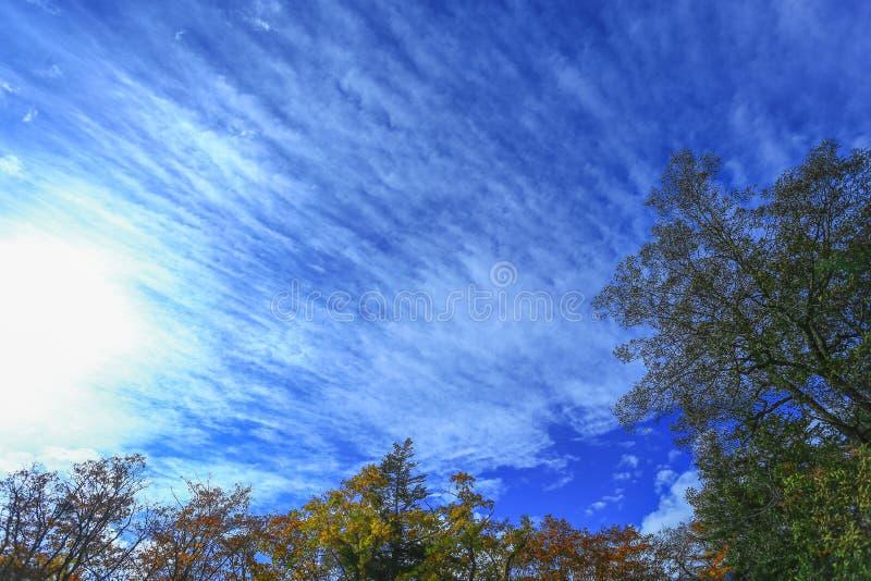 O céu de Osaka foto de stock royalty free