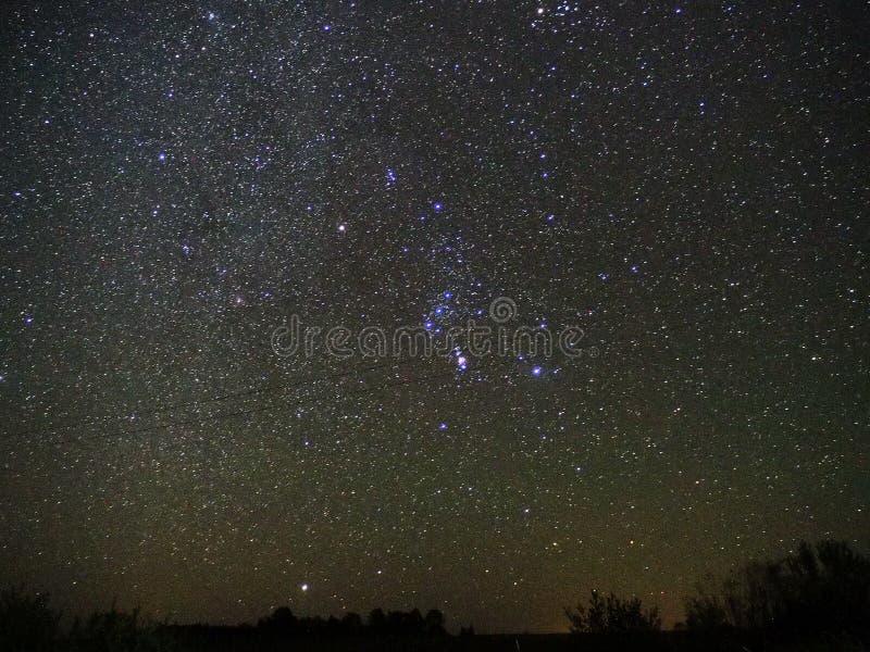O céu noturno stars a observação da constelação de Orion e da estrela de Sirius fotografia de stock
