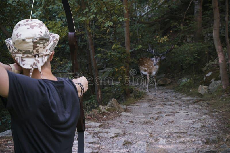 O caçador com uma seta visou um cervo manchado em um mountai estreito fotos de stock