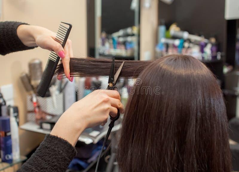 O cabeleireiro faz um corte de cabelo com as tesouras quentes do cabelo a uma moça, uma morena imagens de stock royalty free