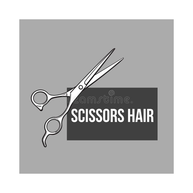 O cabeleireiro profissional de aço inoxidável scissors, ilustração do vetor do estilo do esboço ilustração royalty free