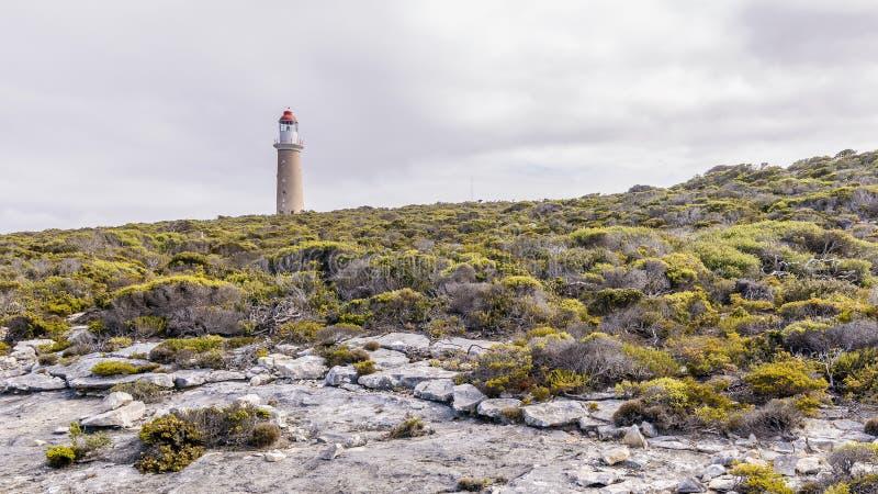 O Cabo bonito du Couedic Farol em um dia nublado, ilha do canguru, Austrália do sul imagem de stock royalty free