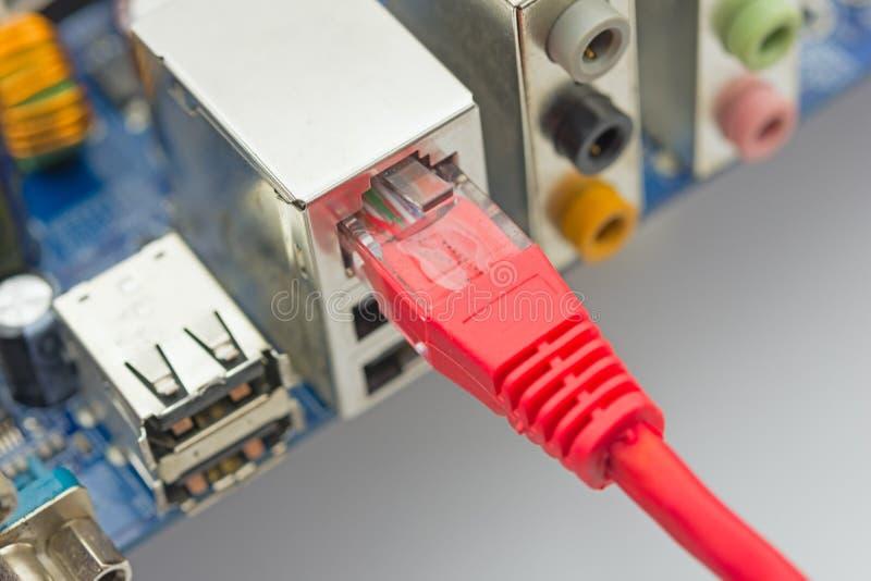 O cabo da rede é conectado ao computador foto de stock royalty free